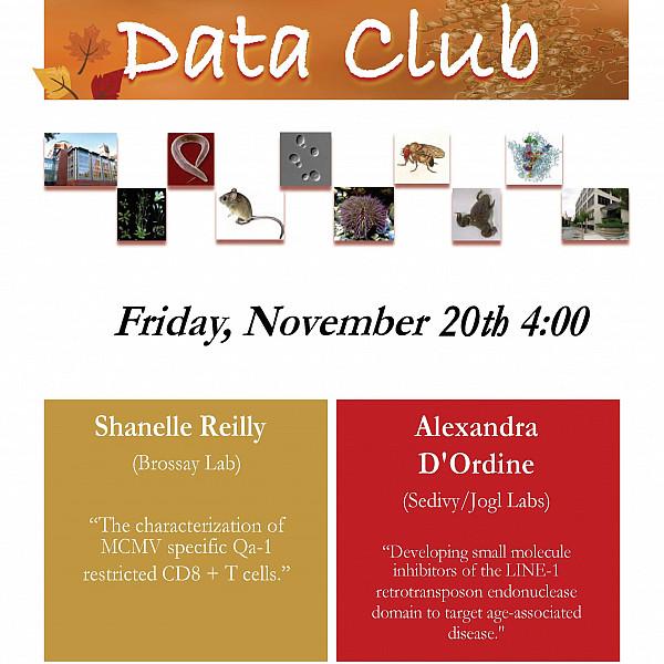 Data Club Reilly DOrdine 11-20-2020 2