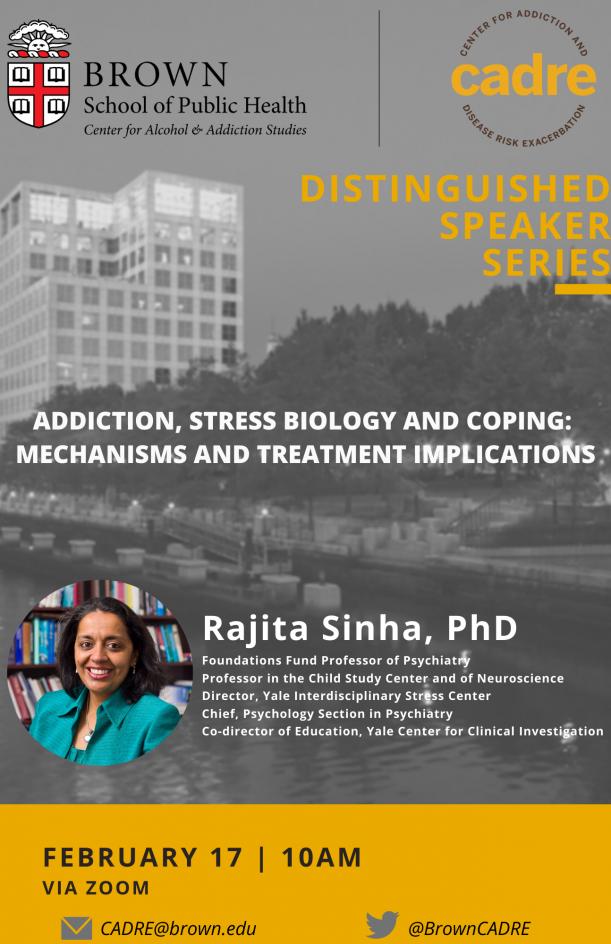 Rajita Sinha, PhD presentation
