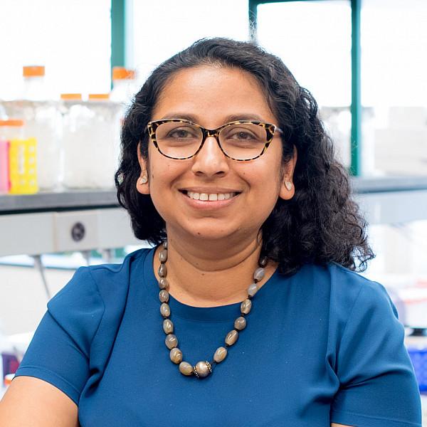 Shipra Vaishnava, PhD